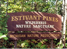 https://en.wikipedia.org/wiki/Estivant_Pines