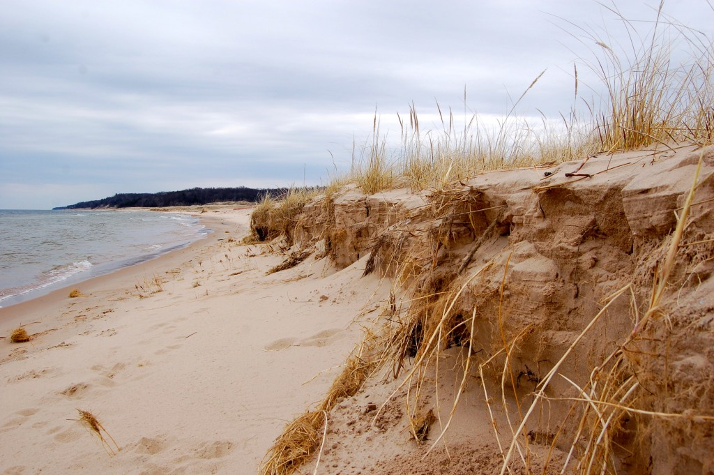Muskegon State Park Beach