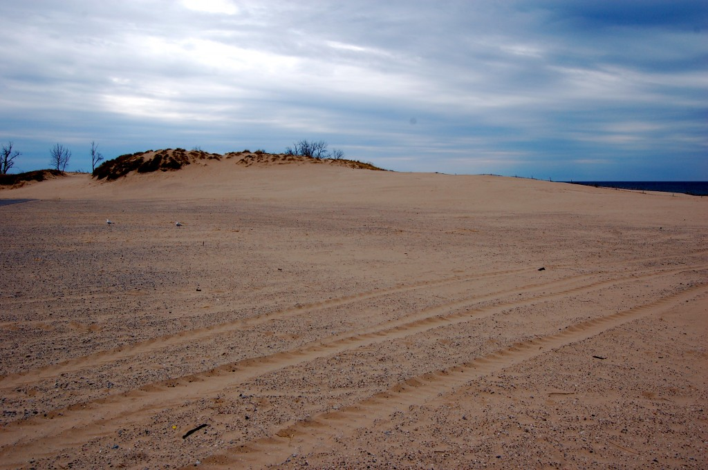 Muskegon State Park Beach Area