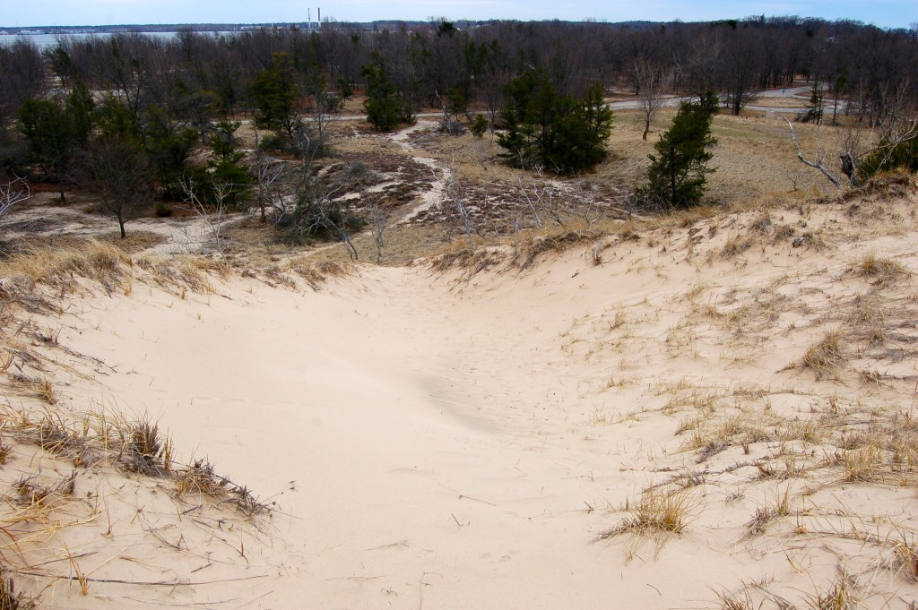 Muskegon State Park Dunes Lake View