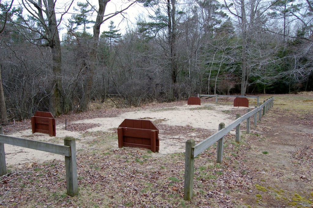 Muskegon State Park Horseshoes