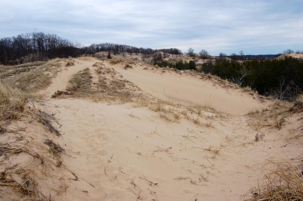 Muskegon State Park Sand Dunes