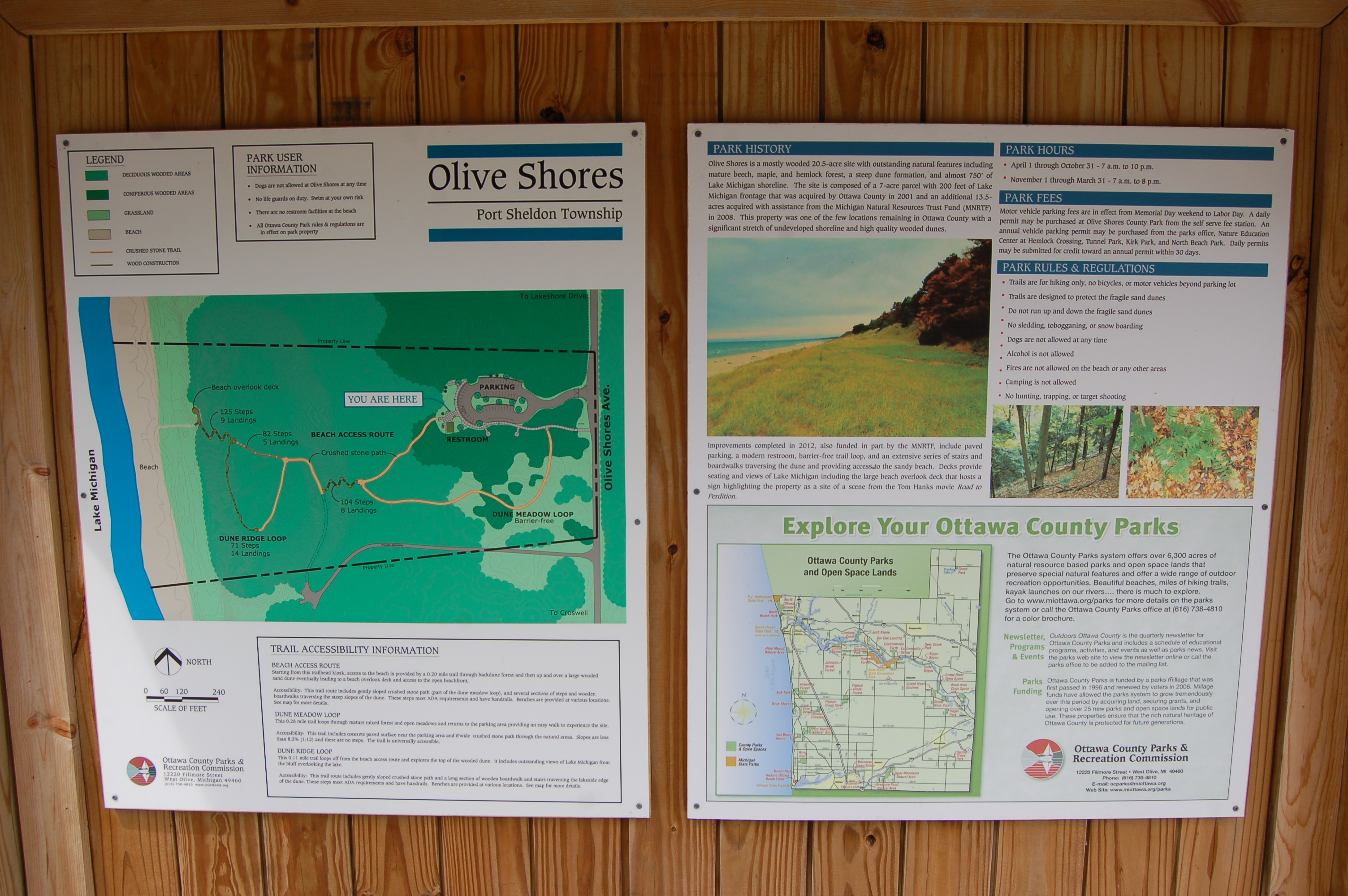 Olive Shores Signs