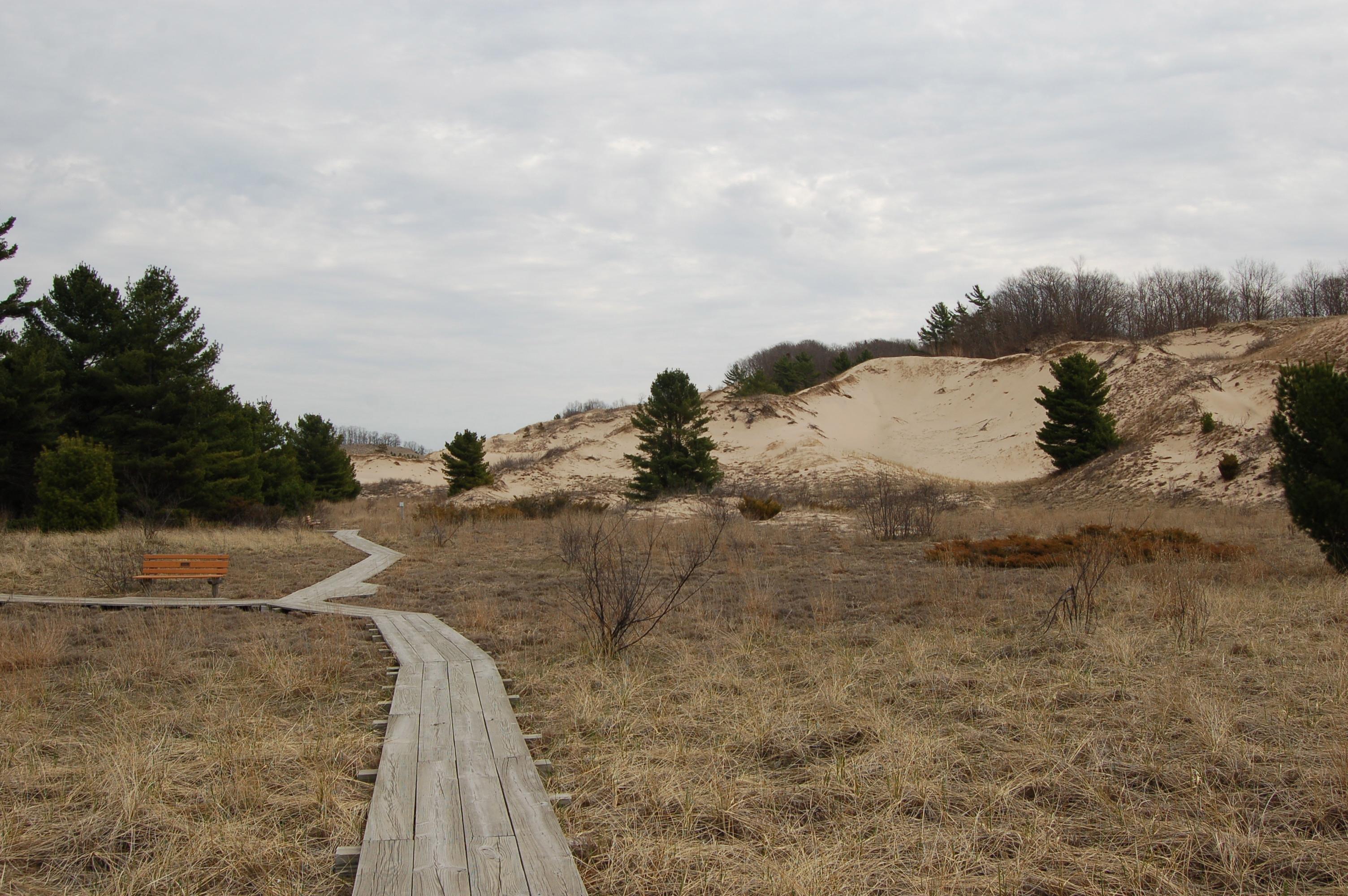 Rosy Mound Boardwalk Dunes