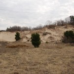 Lake Michigan Sand Dunes Day Trip: Ottawa County Parks