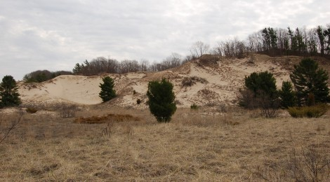 Lake Michigan Sand Dunes Day Trip: Ottawa County Parks
