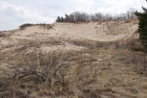 Rosy Mound Dunes 2