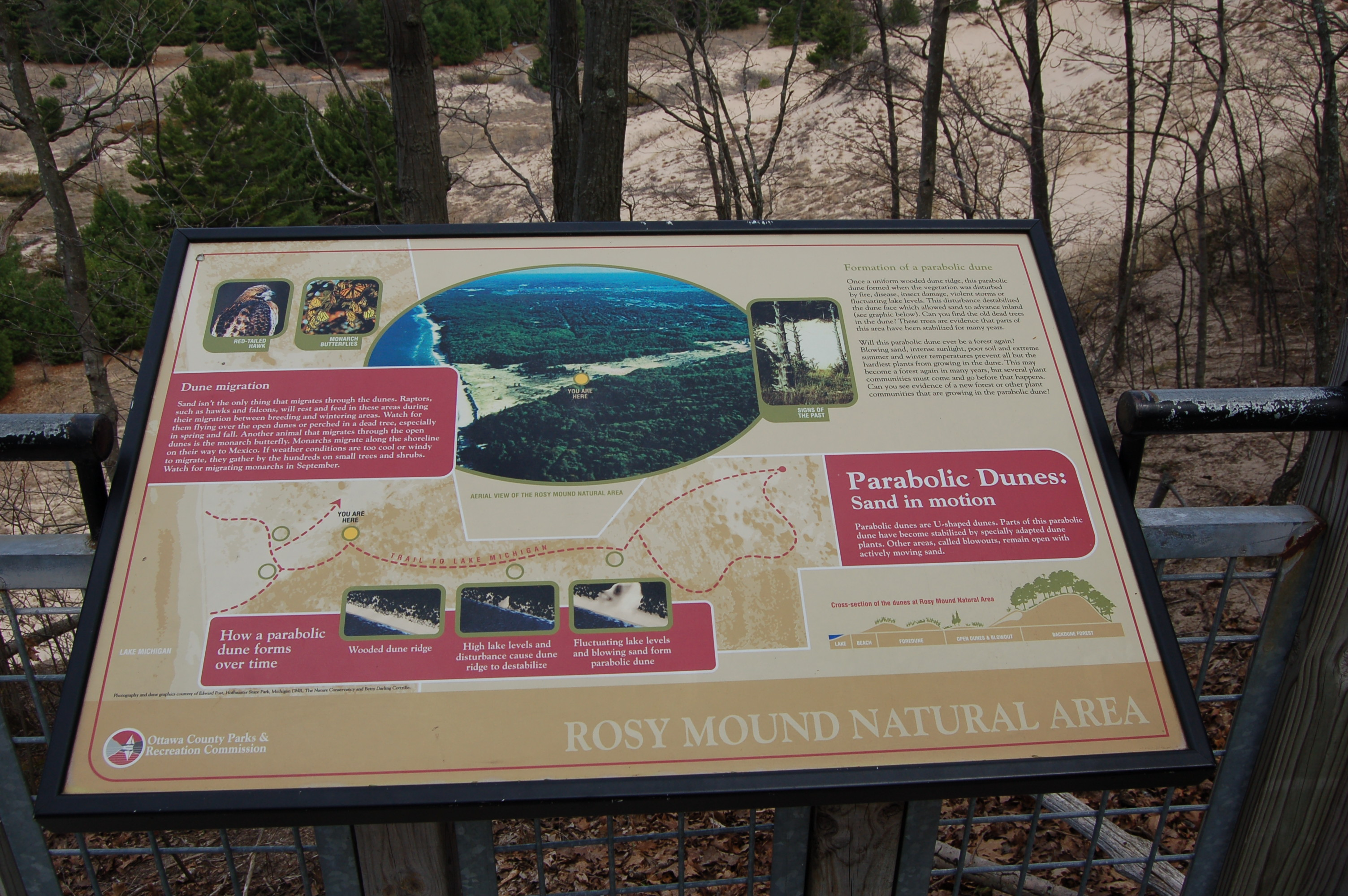 Rosy Mound Info Sign 4