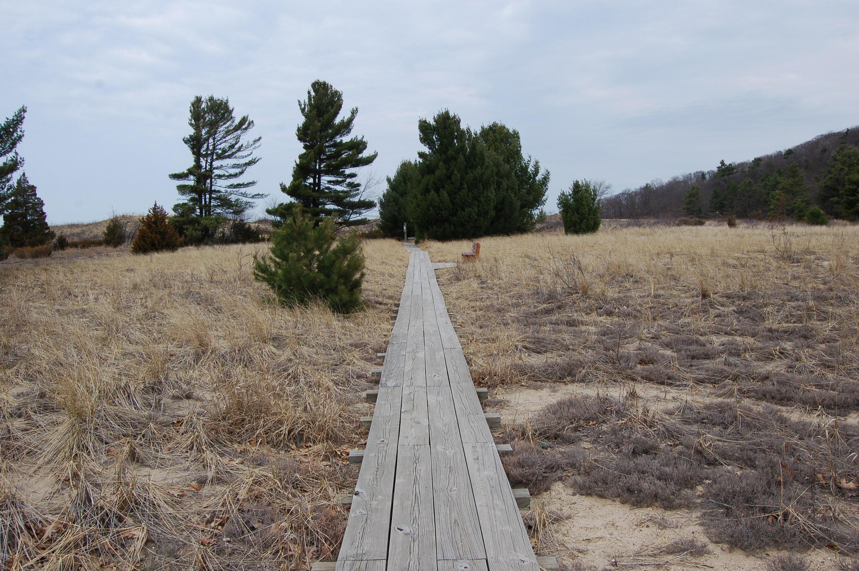 Rosy Mound Trail Header