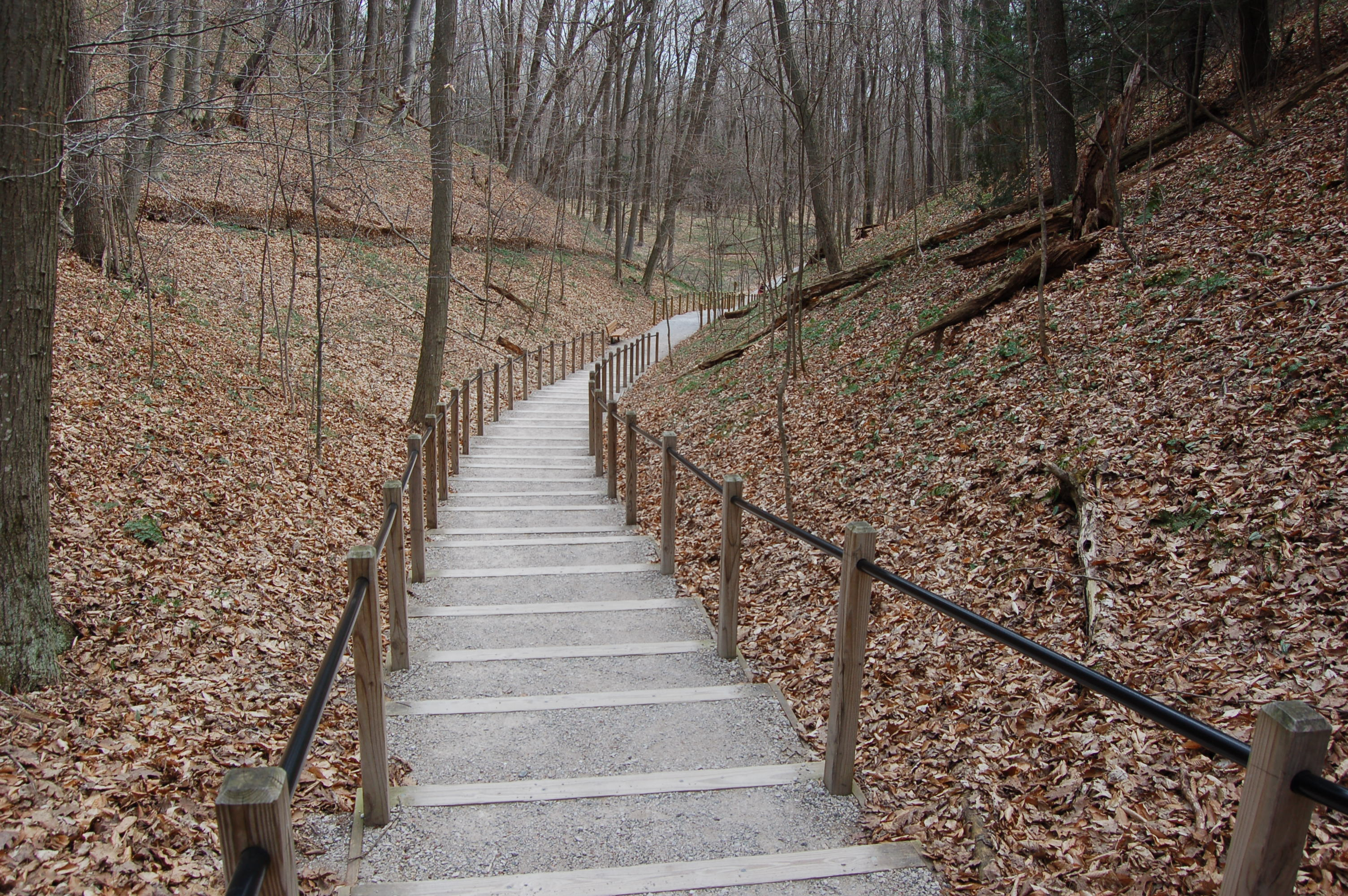 Rosy Mound Trail Staircase