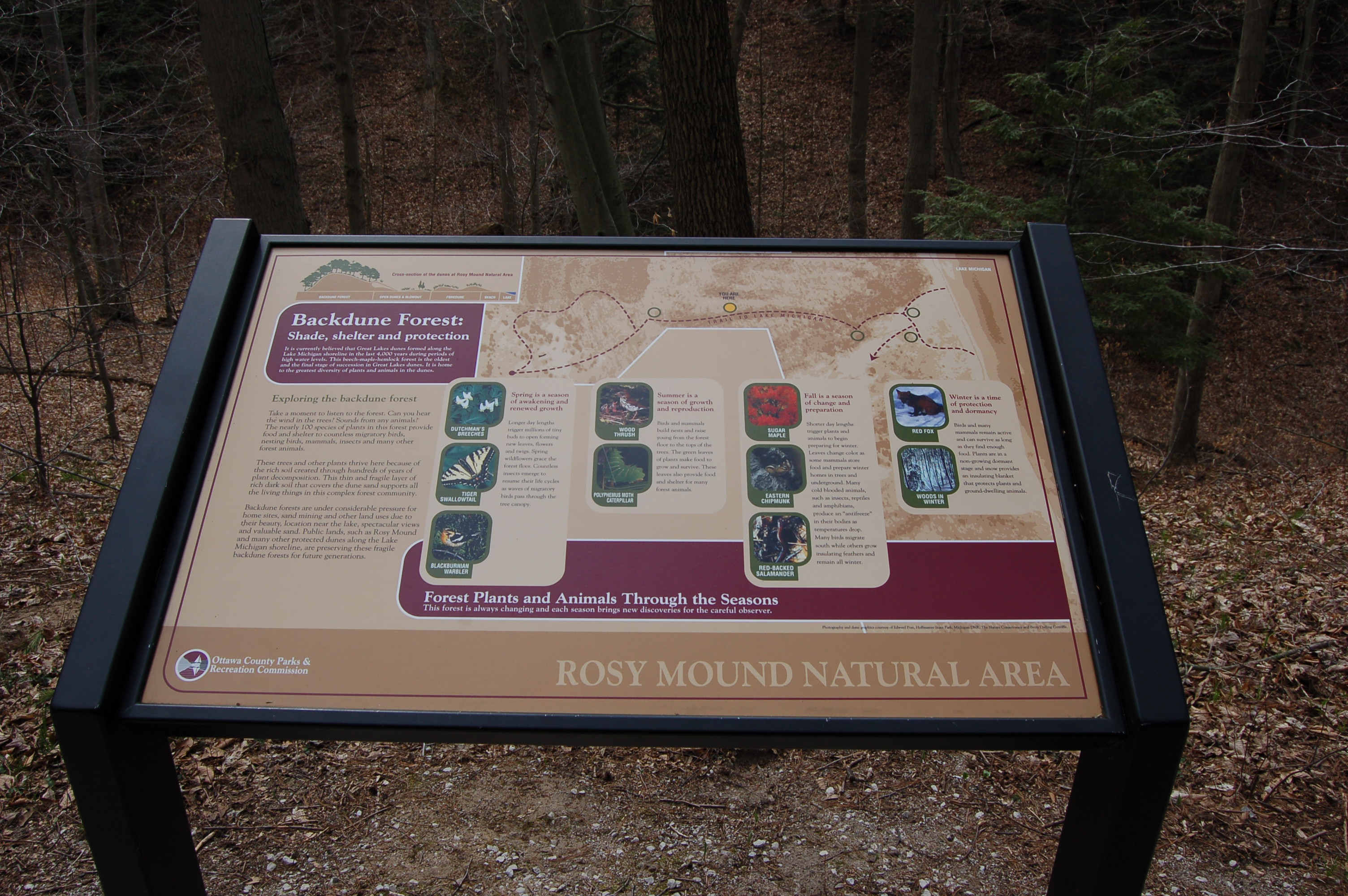 Rosy Mound info Sign 3