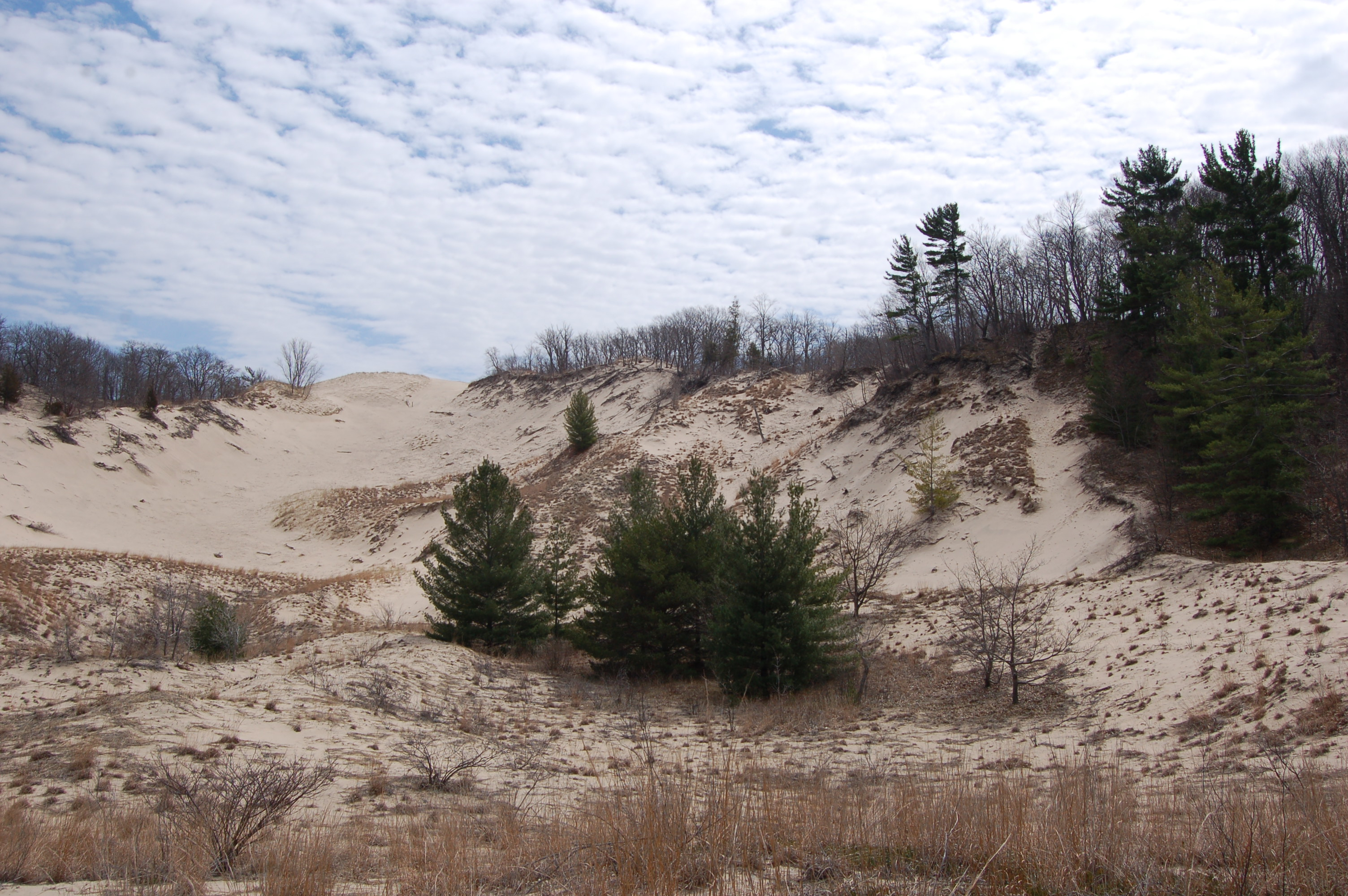 Warren Dunes State Park Dune Blowout