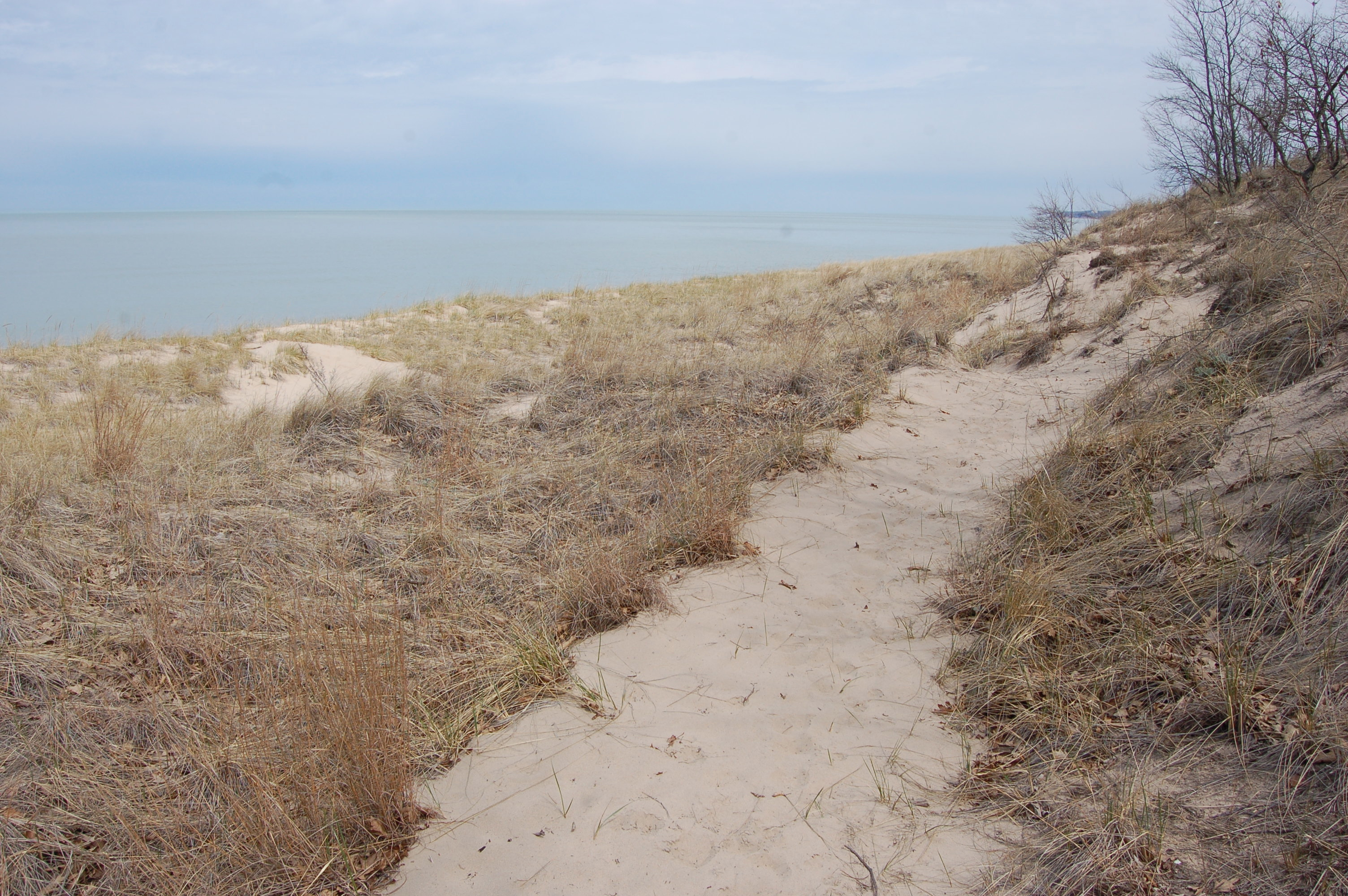 Warren Dunes State Park Dune Lake trail
