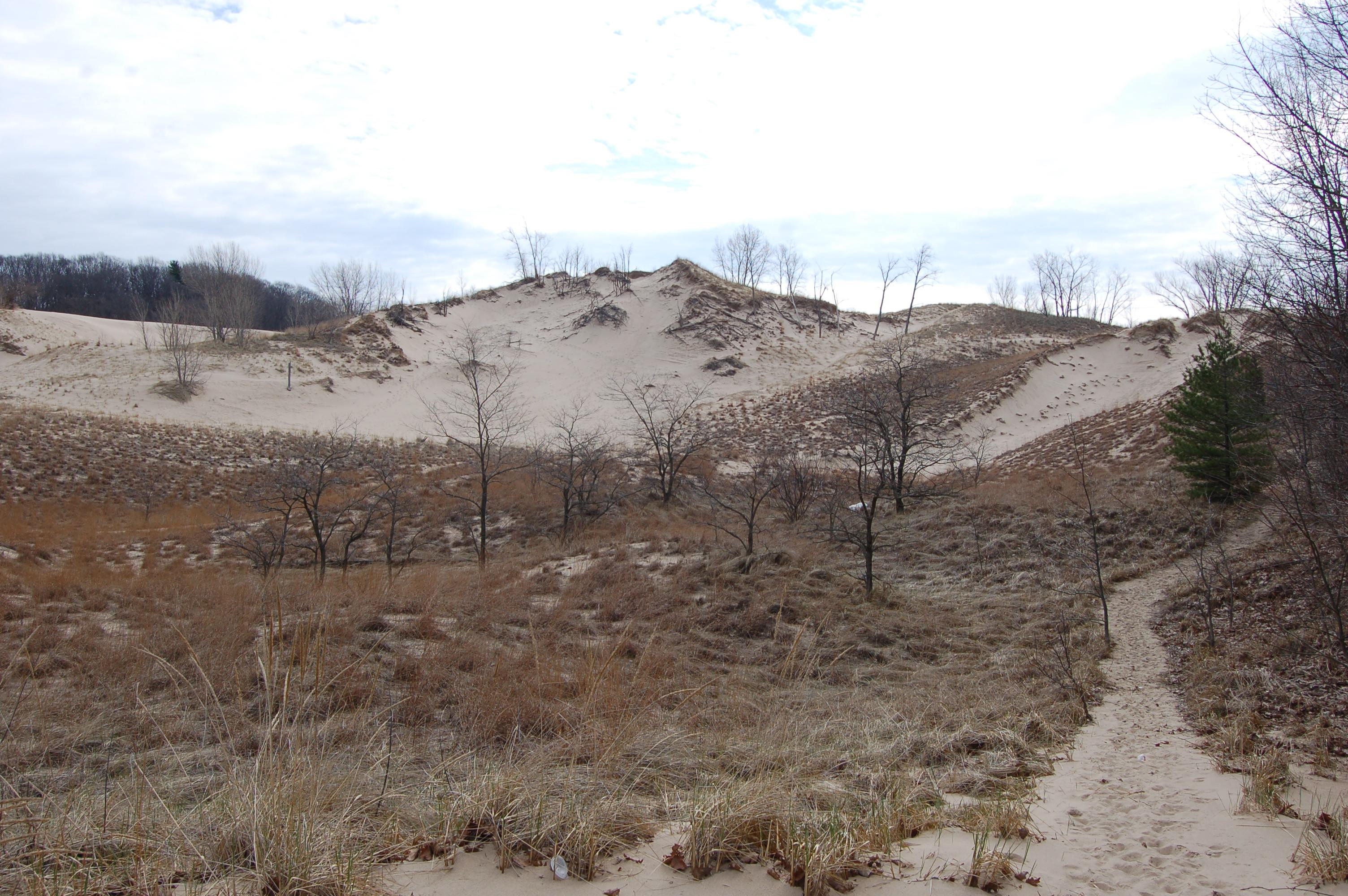 Warren Dunes State Park Dunes Trail