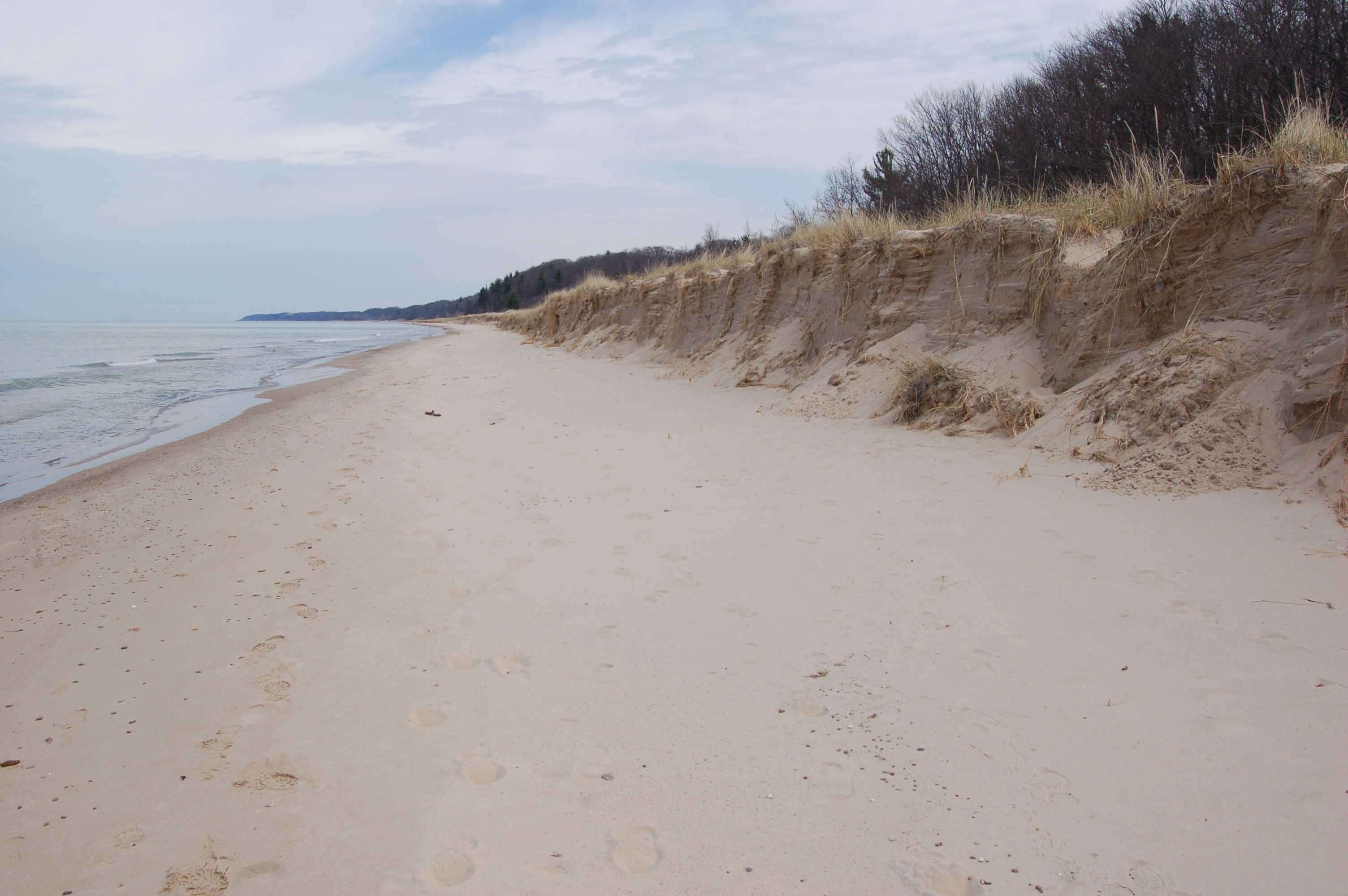 Warren Dunes State Park Lake Michigan North