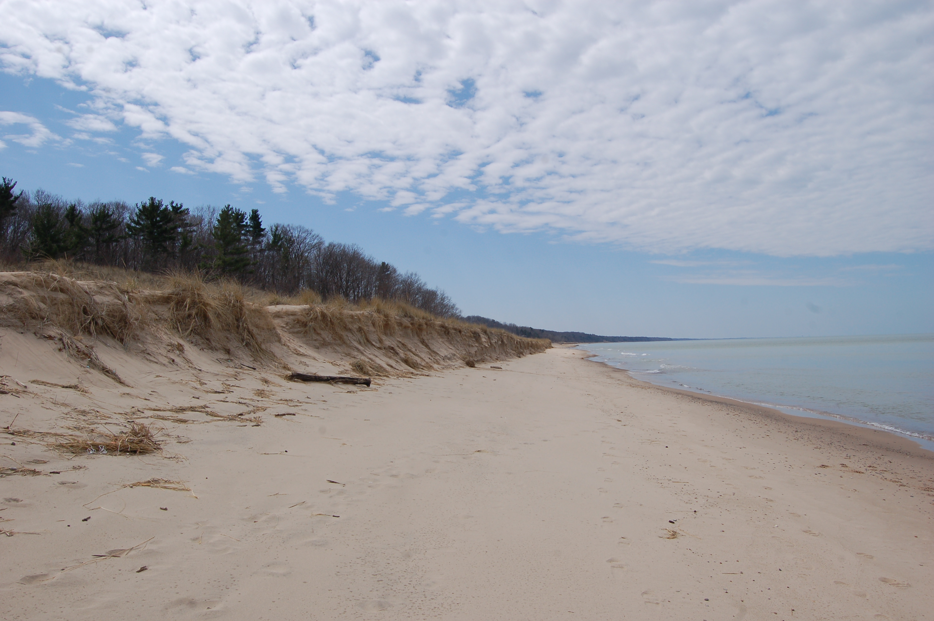 Warren Dunes State Park Lake Michigan South