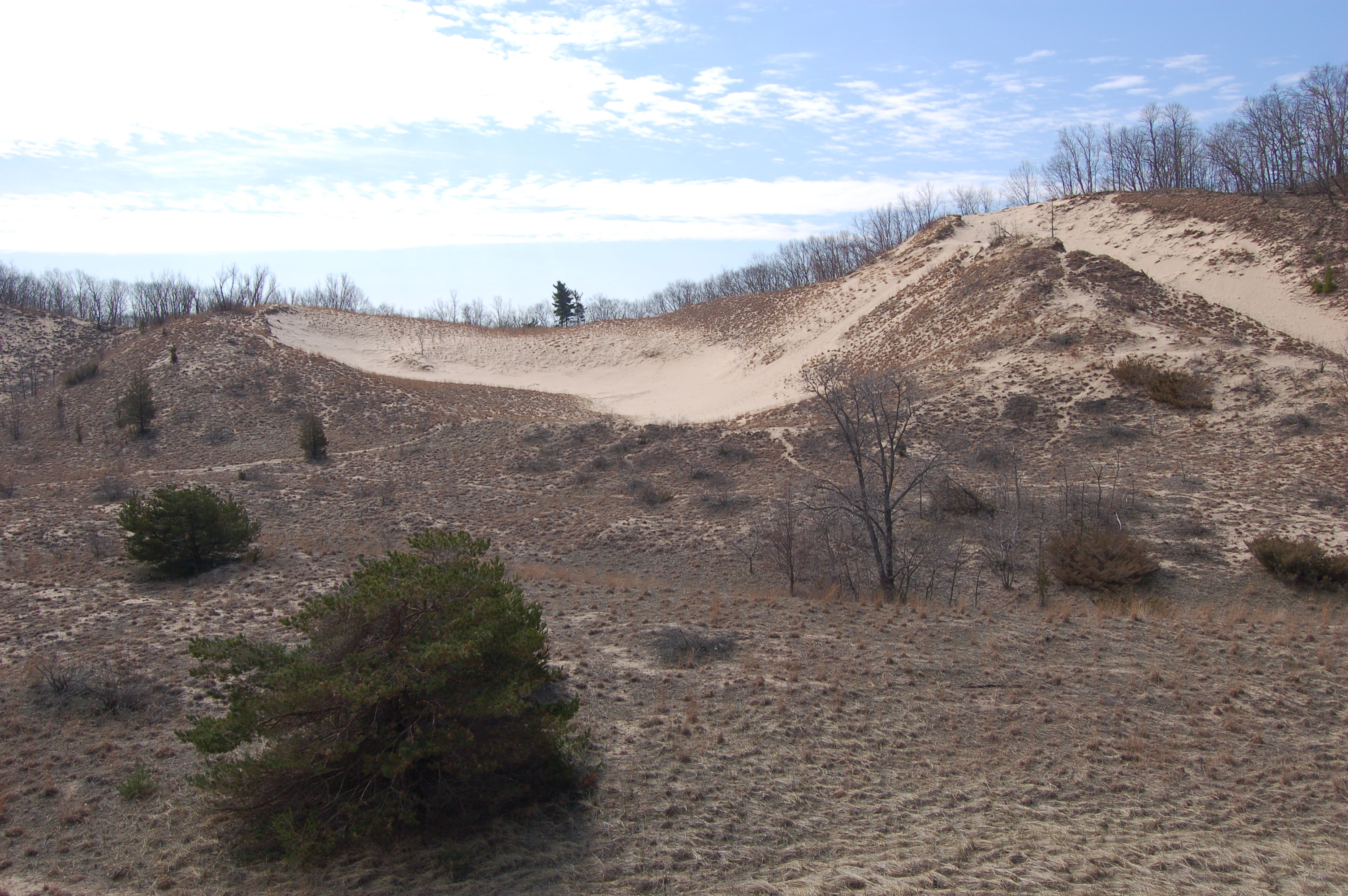 Warren Dunes State Park Overview