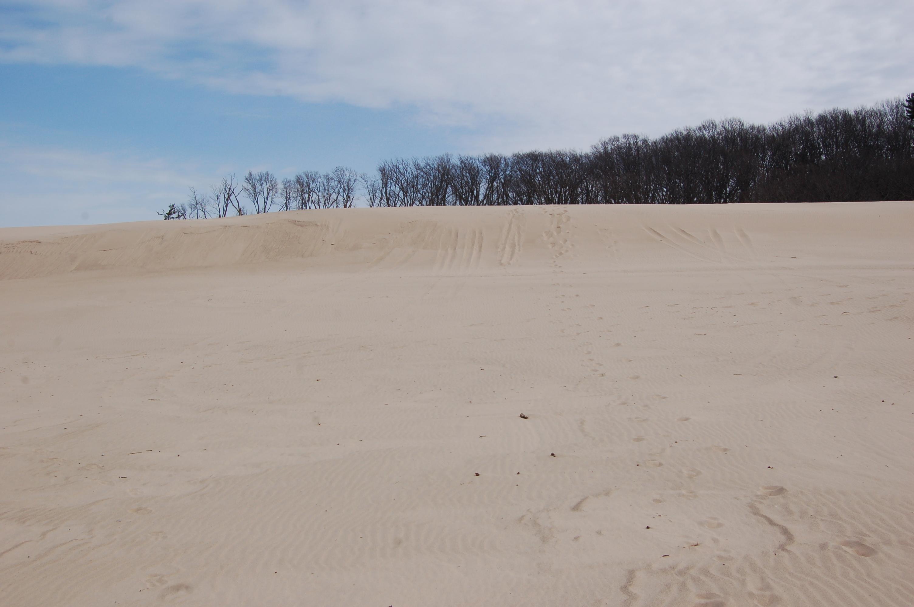 Warren Dunes State Park Sand Sand Sand