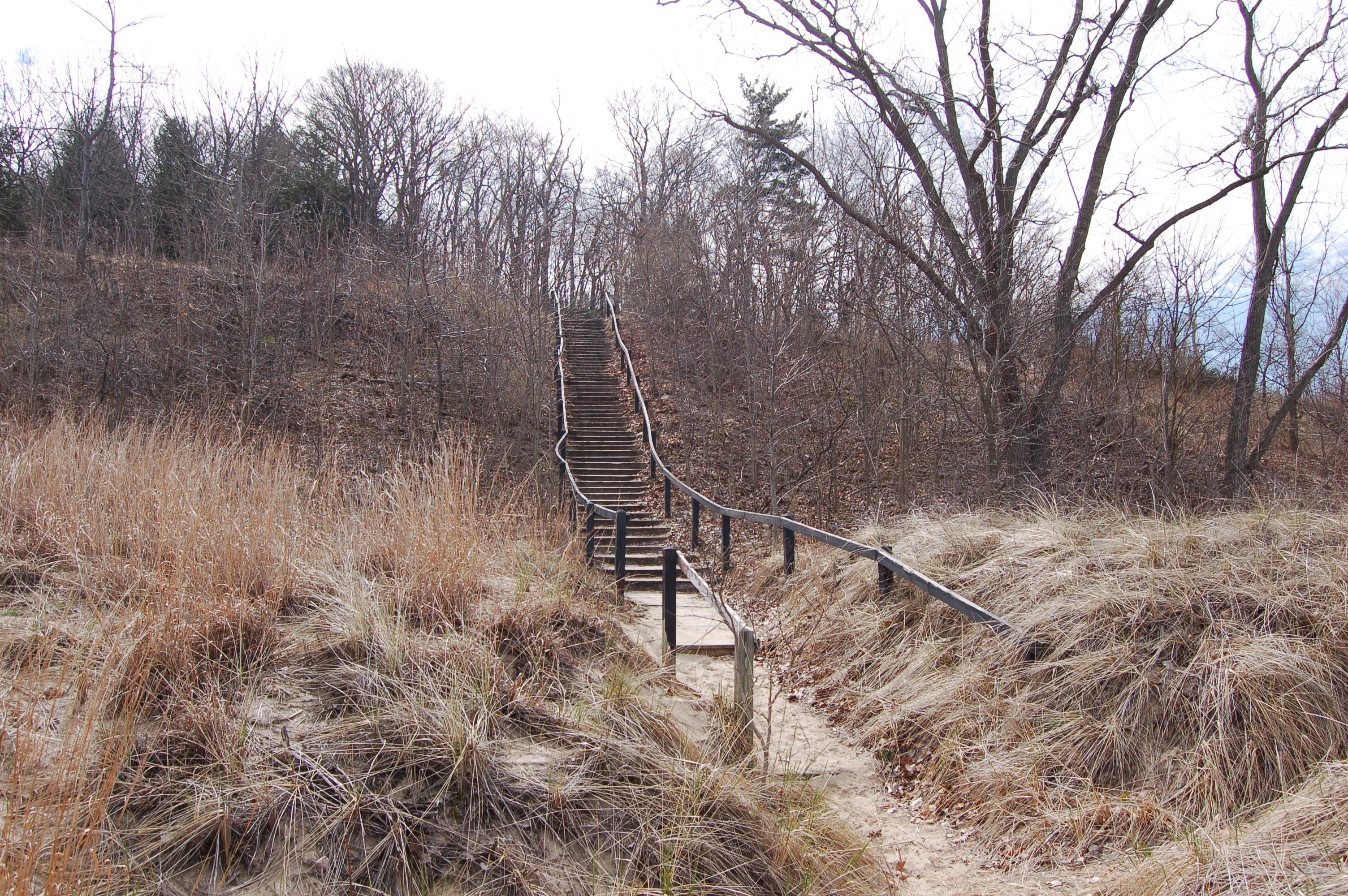 Warren Dunes State Park Staircase