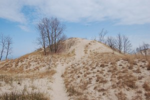 Warren Dunes State Park Top Post