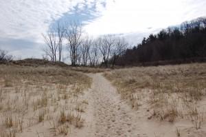 Warren Dunes State Park Trail Sand