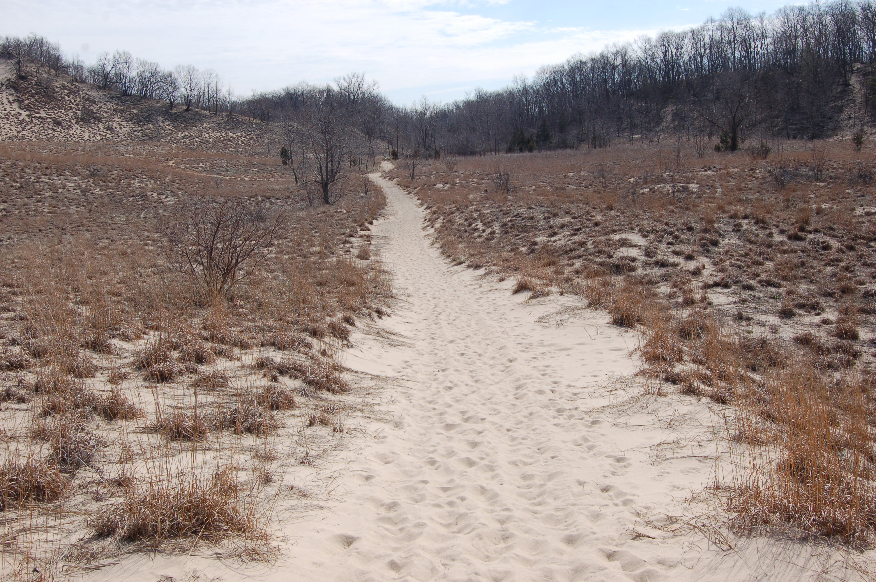 Warren Dunes State Park Trail to Campground