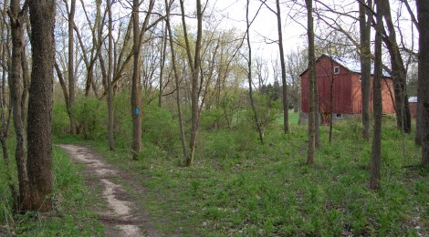Michigan Trail Tuesday: North Country Trail at Fallasburg Park, Lowell