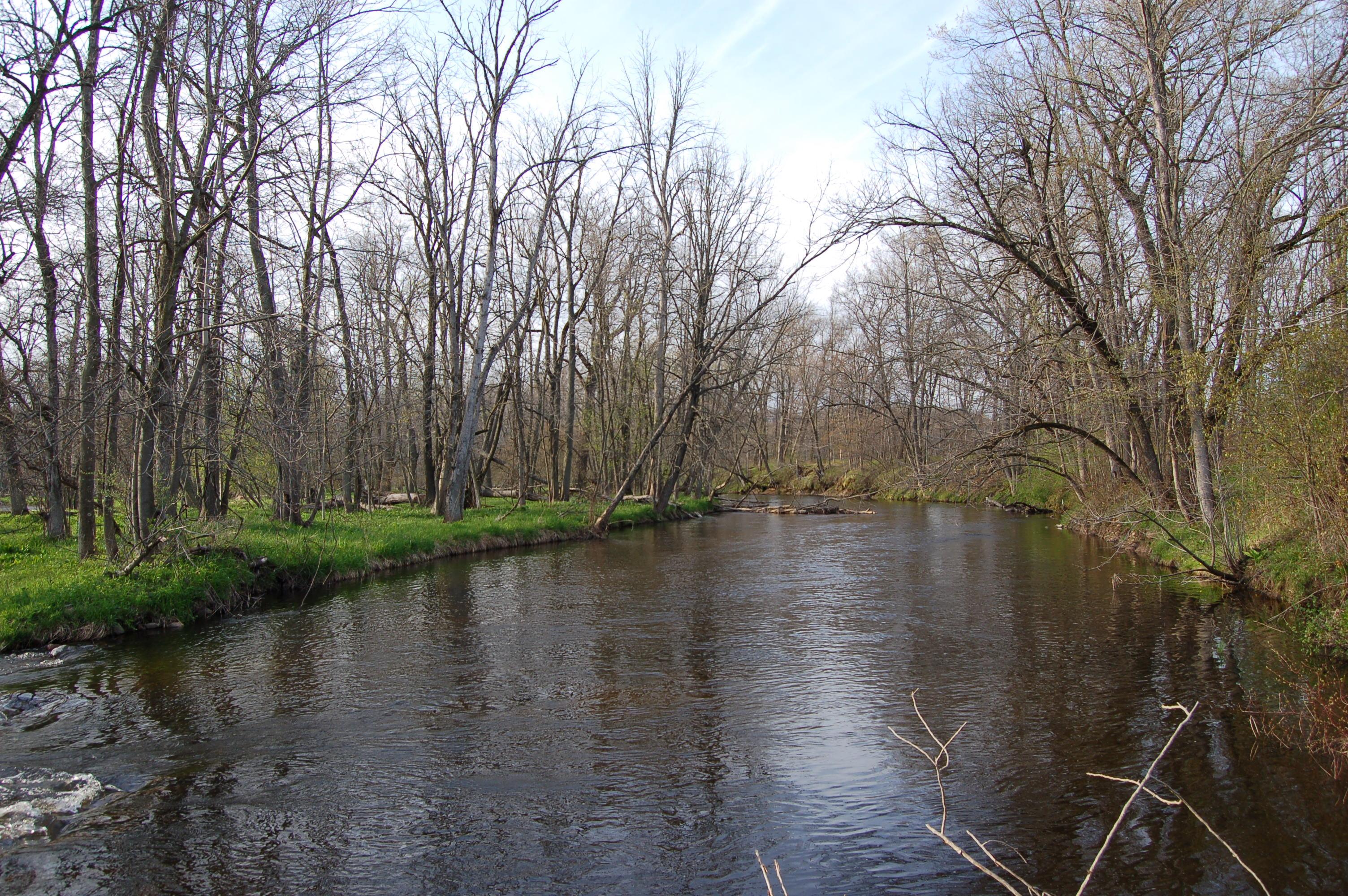 Fallasburg Park Flat River Trail