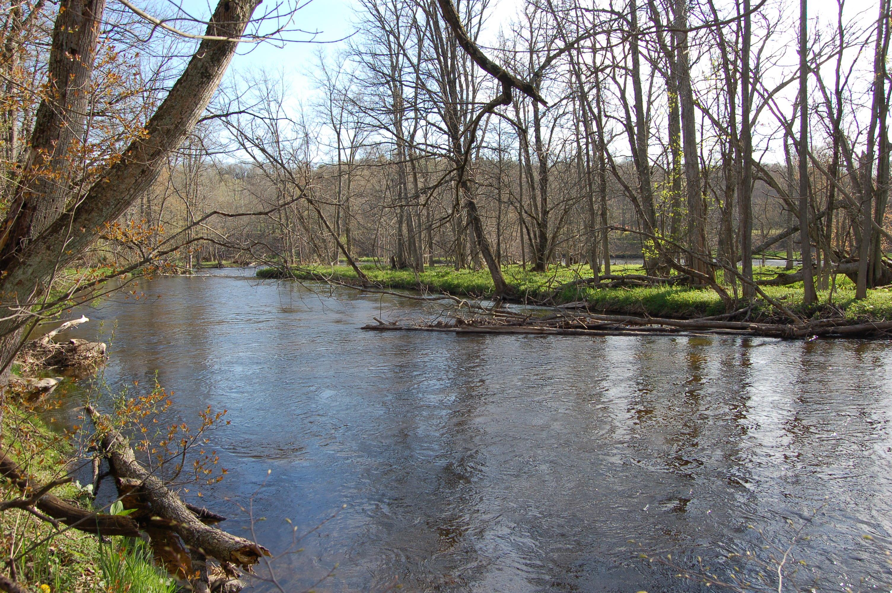 Flat River Lowell Michigan