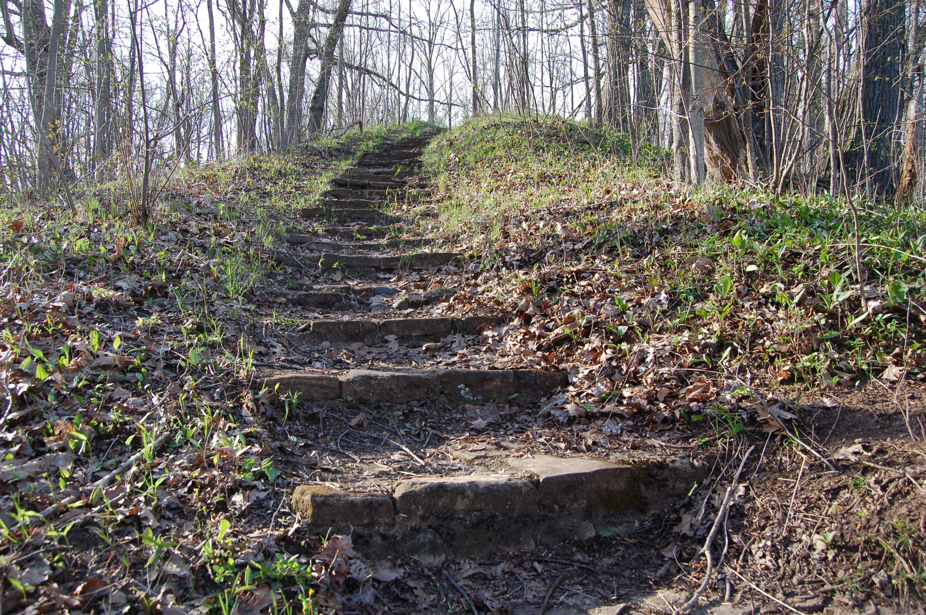 North Country Trail Natural Stairs