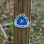 Hike Michigan Trails and Get Rewarded This Summer