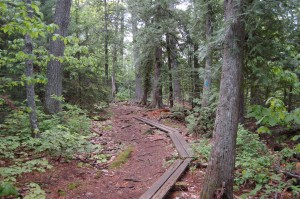 Estivant Pines Trail Copper Harbor MI