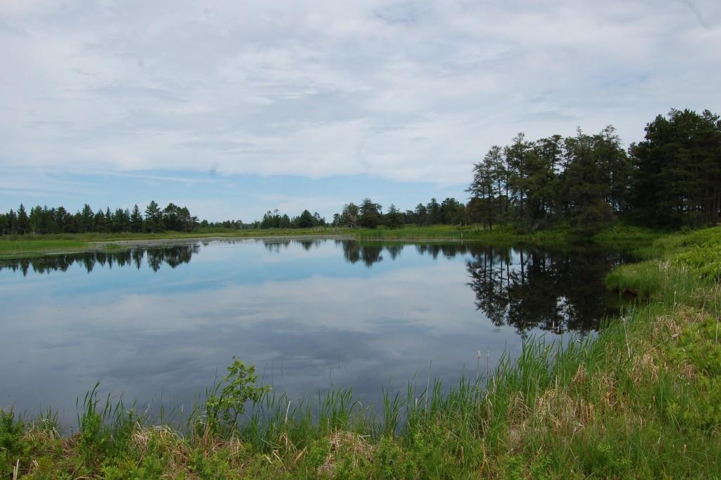 Seney National Wildlife Refuge Clouds Reflect 2