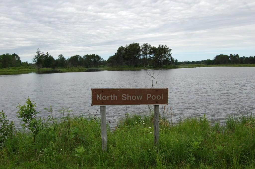 Seney National Wildlife Refuge North Show Pool