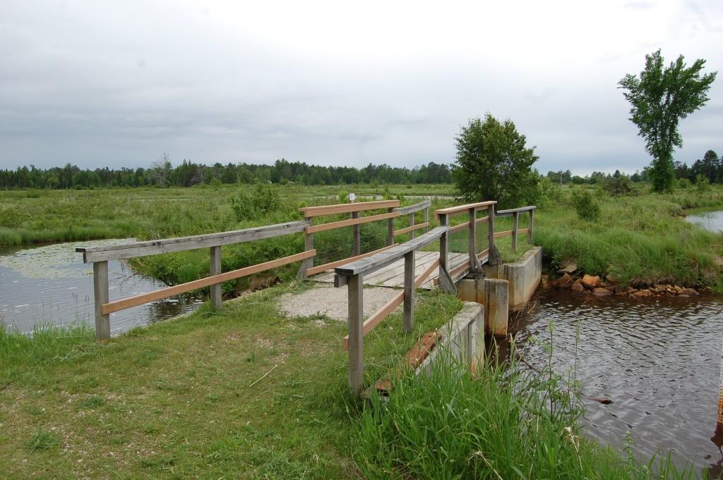Seney National Wildlife Refuge Show Pool Bridge