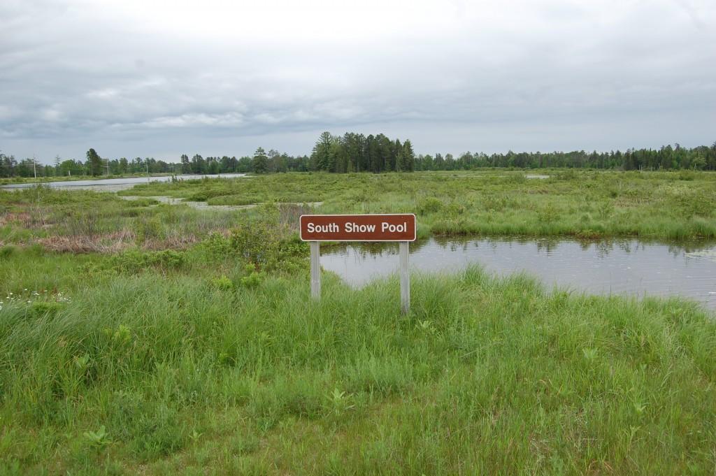 Seney National Wildlife Refuge South Show Pool
