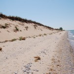 Here Are The Six Fee Free Days For Sleeping Bear Dunes National Lakeshore in 2021