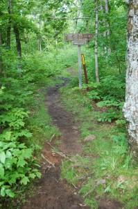 Summit Peak Trail PMWSP