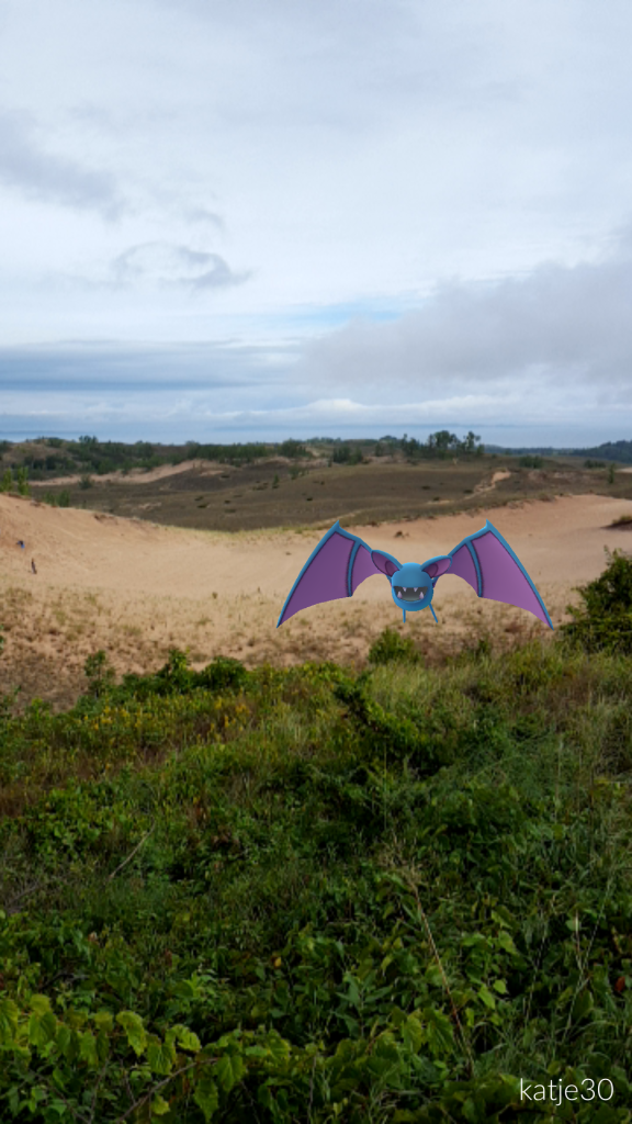 Zubat Sleeping Bear Dunes