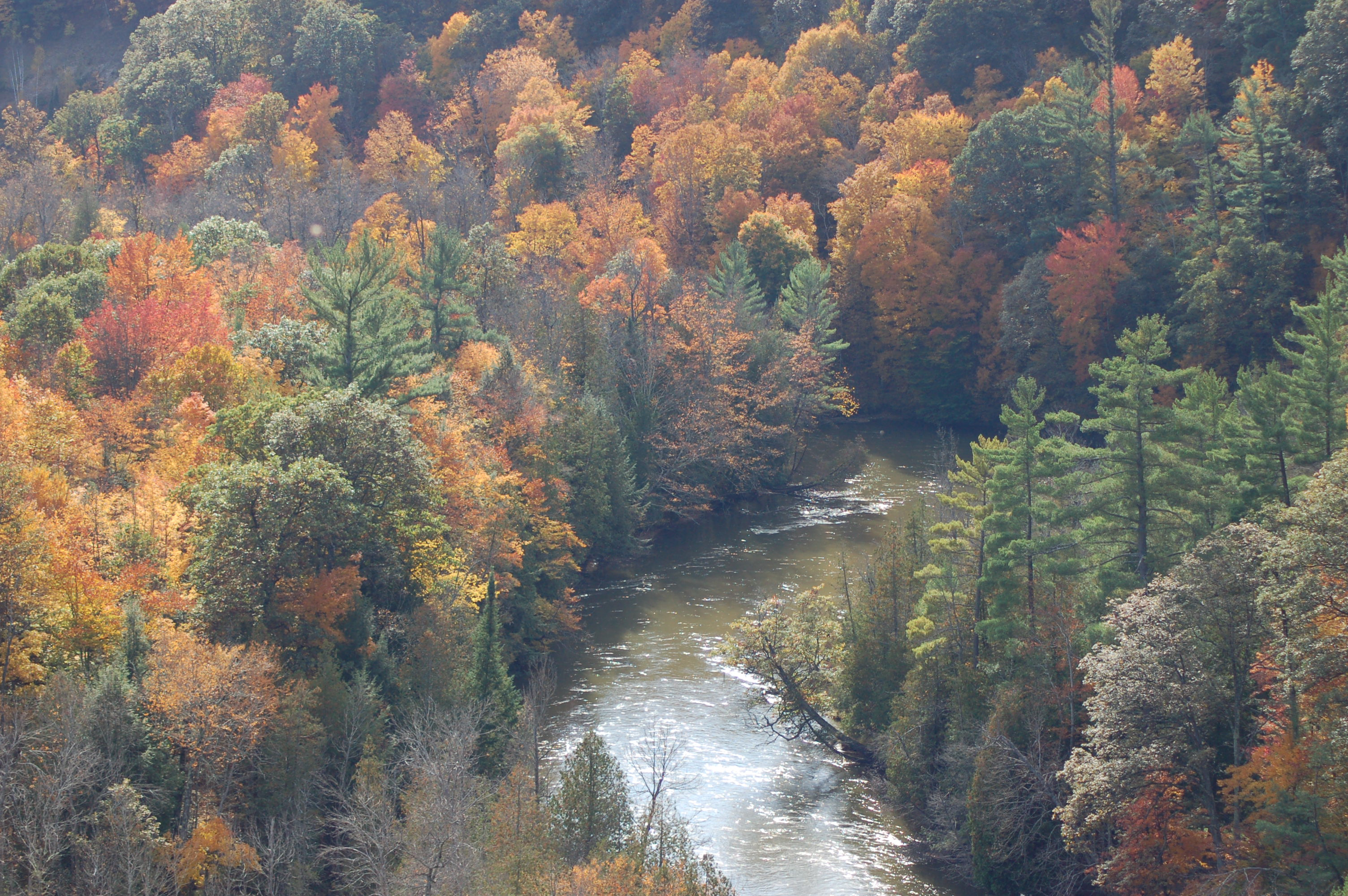 Manistee River Fall Color Michigan