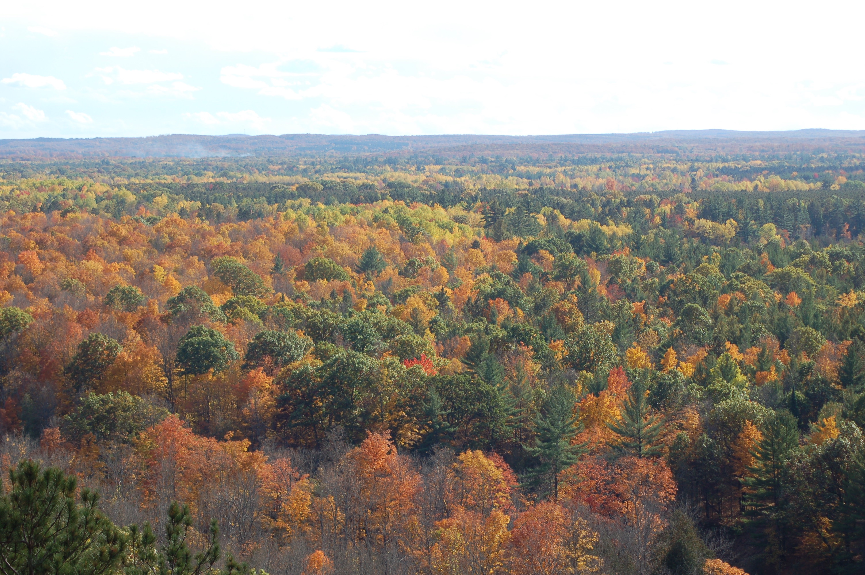 Manistee River Overlook Fall Color MI 1