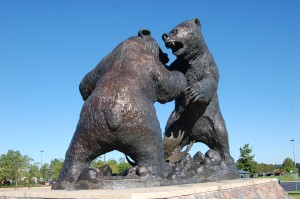 Bears Fierce Encounter Cabelas Dundee