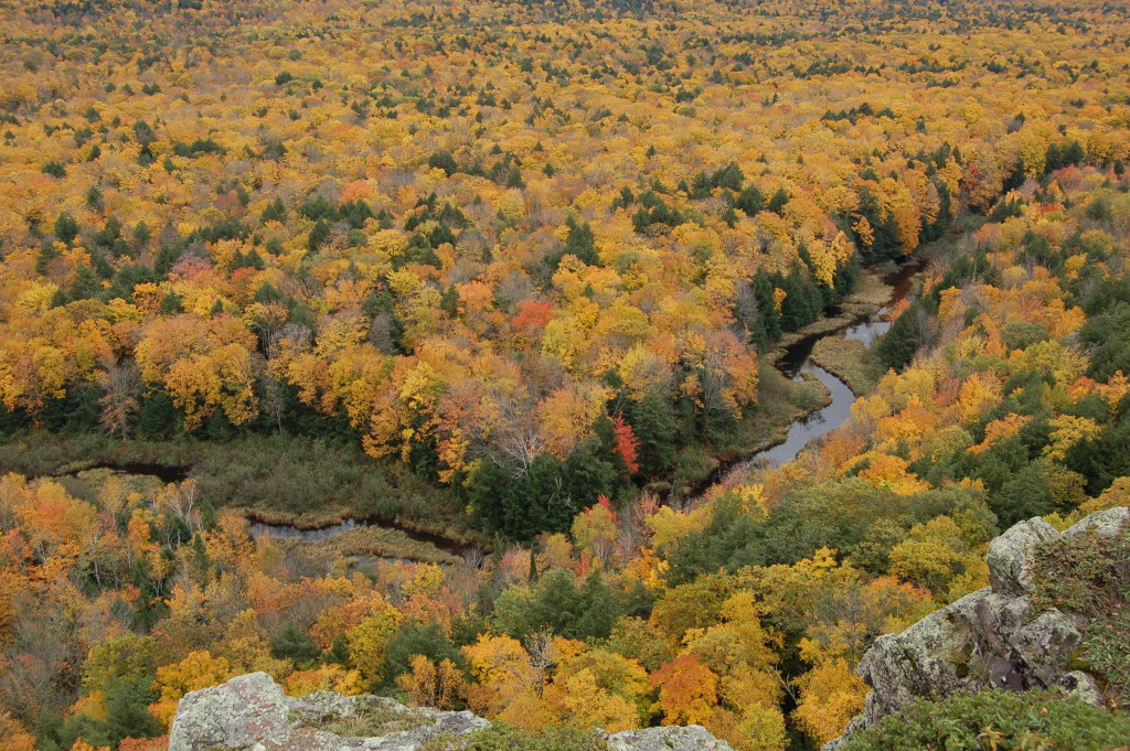 Fall Color Carp River Michigan 2016