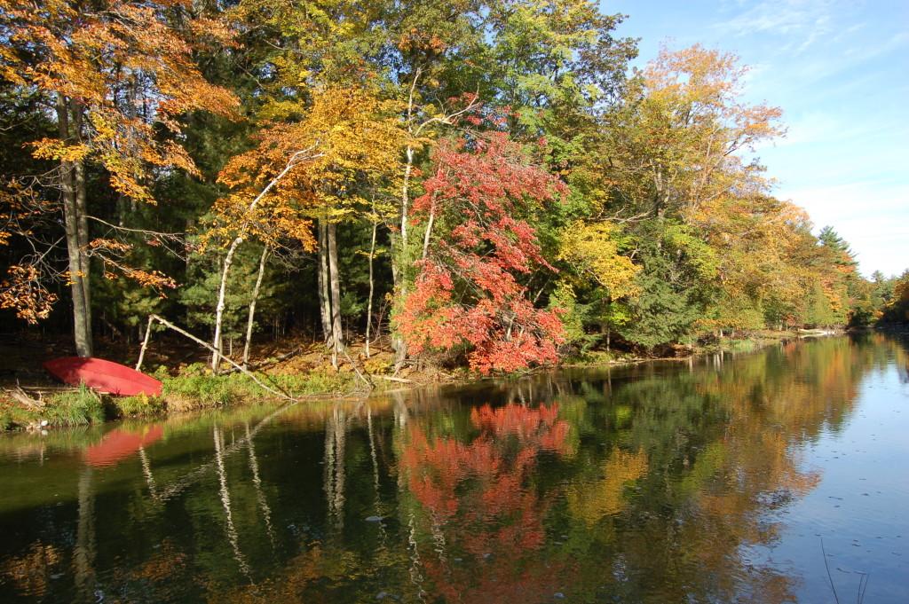 Fall Color Platte River Michigan