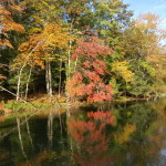 Things to Do in Michigan Fall 2017 – Travel the Mitten's A to Z Guide