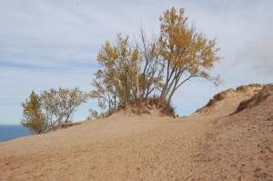 Fall Michigan Sleeping Bear Dunes