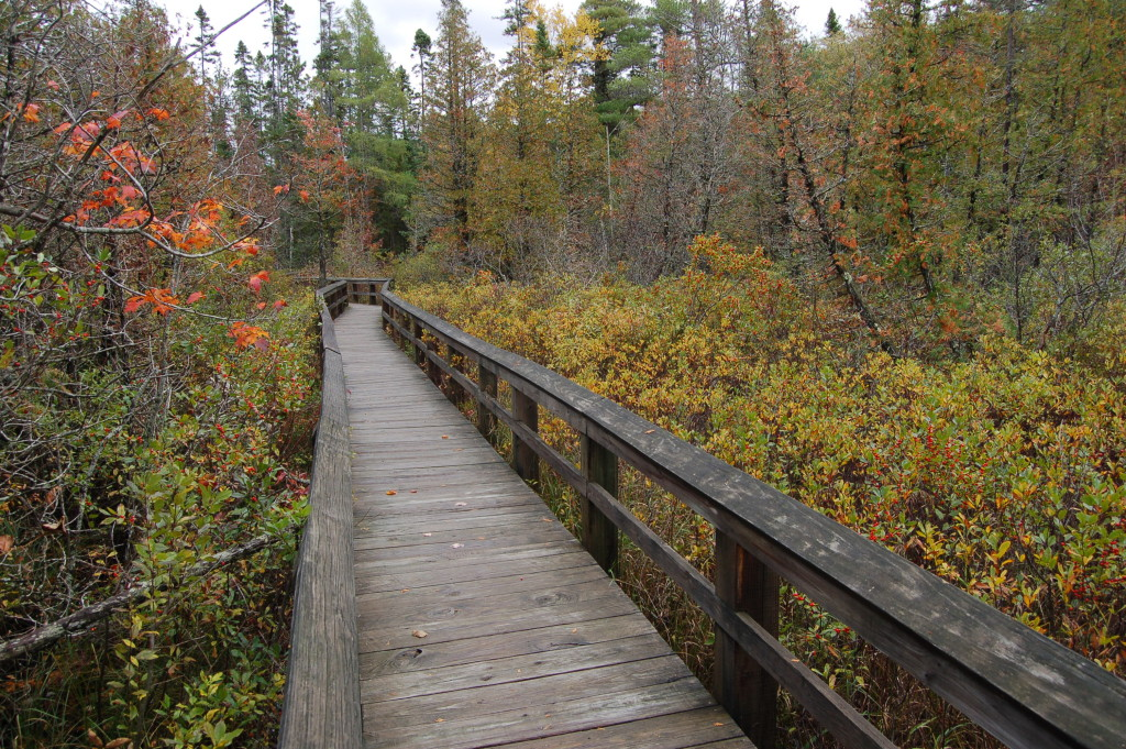 Pictured Rocks Marsh Trail Fall 2016