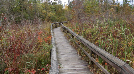 Michigan Trail Tuesday: Sand Point Marsh Trail, Pictured Rocks National Lakeshore