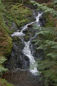 Union Mine Trail Waterfall 2