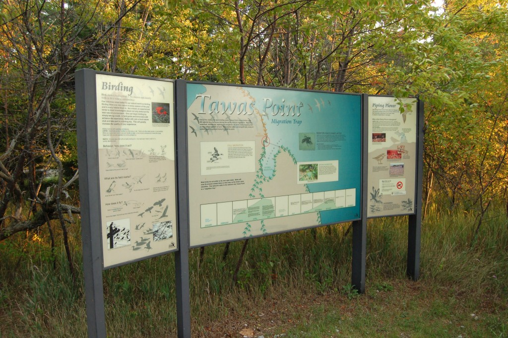 Tawas Point State Park Bird Migration Information